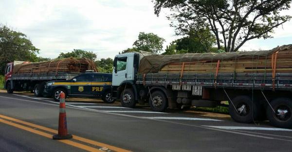 Caminhão é apreendido com mais de 30 toneladas de madeira ilegal