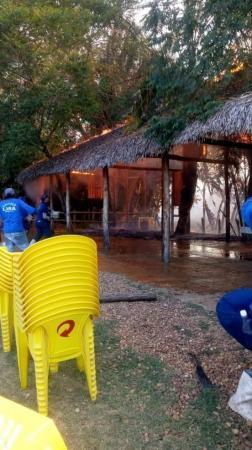 Incêndio  atingiu canavial da Fazenda Lira em Amarante