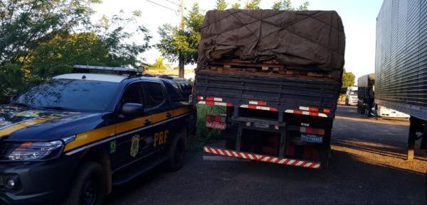 PRF apreende 25 mil Kg de madeira sem licença ambiental na BR-316