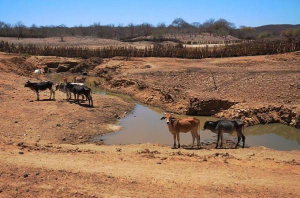 Governador decreta emergência em mais 25 municípios por conta da seca