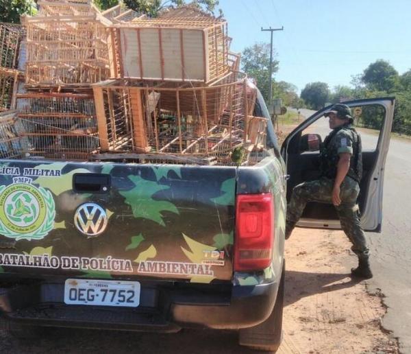 Seis são presos por crimes ambientais em fiscalização no Sul do PI